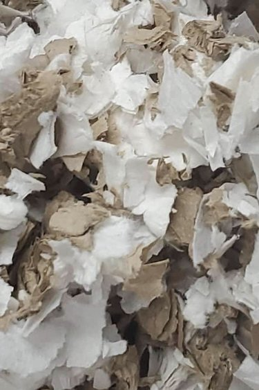 Magazoo Ripe de papier 2.8 pi.cu