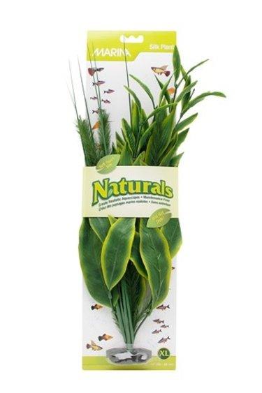 Plante en soie Marina - Silk plante Marina