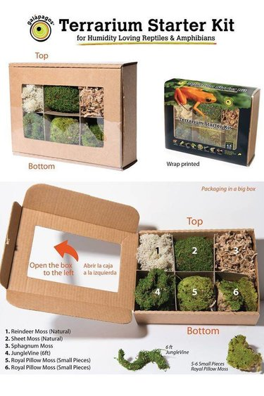 Galapagos Ensemble de départ Humide/Terrarium Decor Start Humider Kits