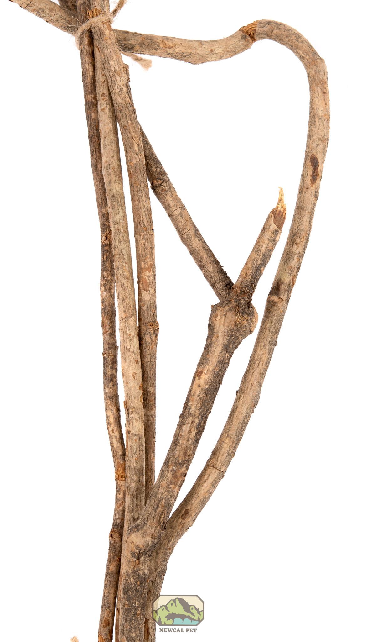 NewCal Pets Branches de vigne 5 par paquet - Vine Branches 5-pack