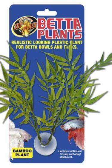 Zoomed Plante bambou à betta/Betta Plants™ – Bamboo