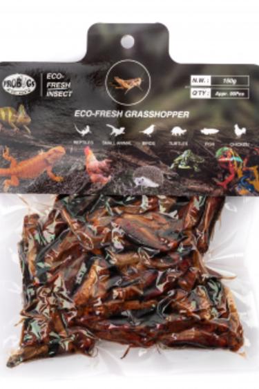 ProBugs Sauterelles-Grasshoppers, 150g