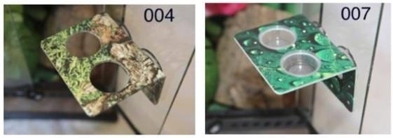 C3 Ledges Plateforme petite pour gecko à 2 contenants de 1.5 oz à ventouse- Small gecko ledge suction cup