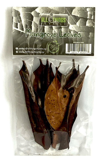 All things reptile Feuilles de mangrove de différentes tailles pq 10 - Mangrove Mix Size Leaves 10-pack