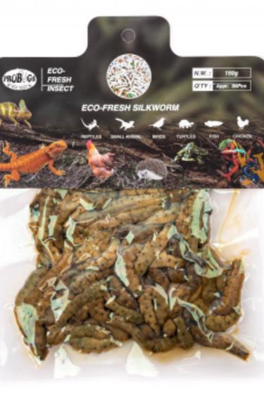 ProBugs Ver à soie Eco-Fresh 150g - Eco-Fresh Bulk Silkworm, 150g