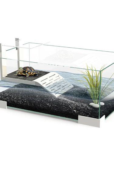 Ciano Aquarium contemporaine pour tortue