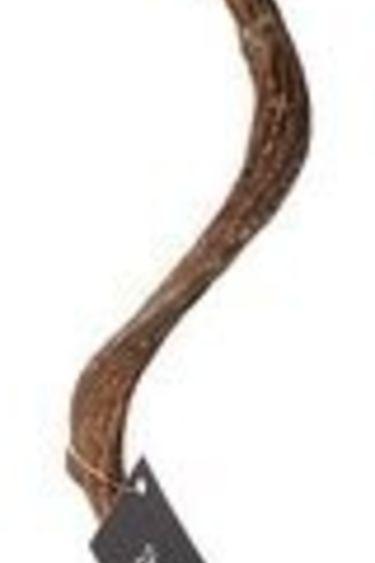 Galapagos Branche de Jungle torsadée/ Jungle wood natural brown