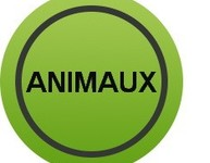 Promotions - animaux