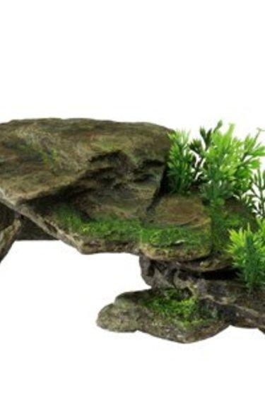 Formation rocheuse avec plantes - grise