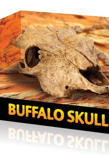 Exoterra Cachette en forme de crâne de bison