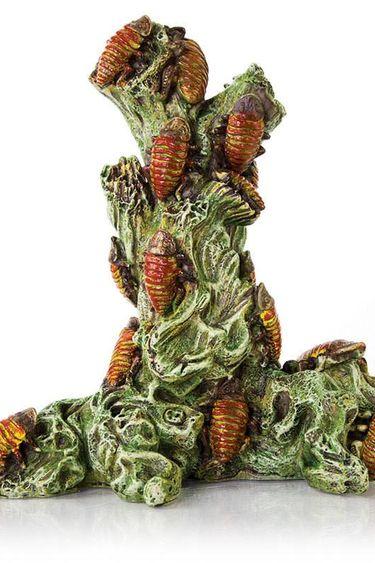 Origins Créature effrayante Tour de cafards de Madagascar 6.5 X 5.5 X 7.5 po