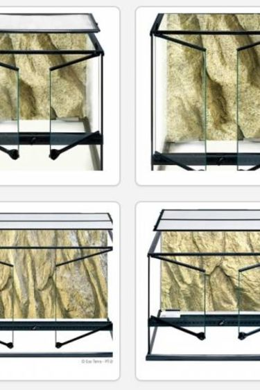 Exoterra Terrarium en verre