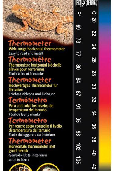 Exoterra Thermomètre à large échelle