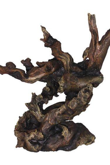 Treasures underwater Branche engloutie