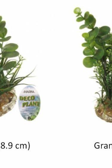 Marina Plante décorative DECO PLANT  pour aquarium