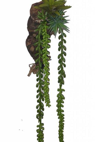 Pet-Tekk Baie en suspension magnétique - Hanging Berry