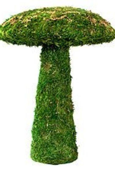Galapagos Champignon de jardin 11''/ Garden Mushroom