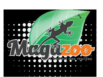 Magazoo, l'Univers des Reptiles