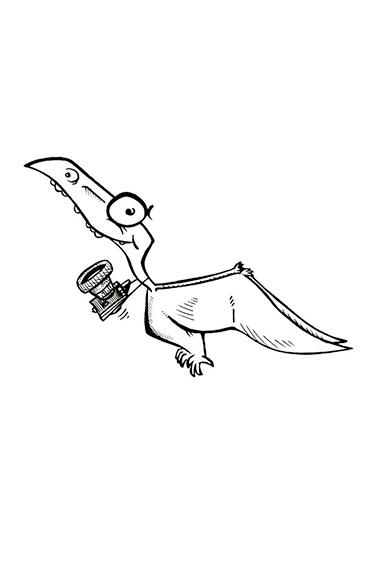 Gecko à queue préhensile Sarasinorum mâle