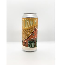"Fat Orange Cat ""This Is Not My Beautiful Beer"" NEIPA 4-Pack 16oz Cans"