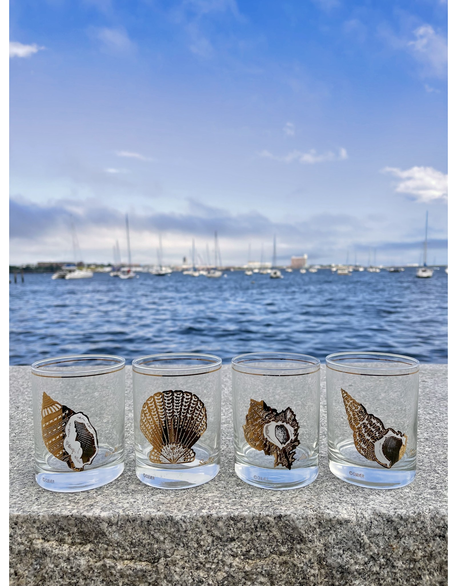Culver Rocks Various Shells in White & Gold (Set of 4)