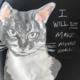 pounce Pounce Tee - Cat