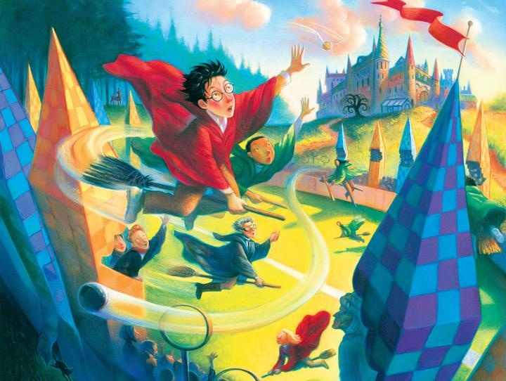New York Puzzle Company Quidditch