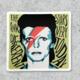 Citizen Ruth David Bowie Sticker