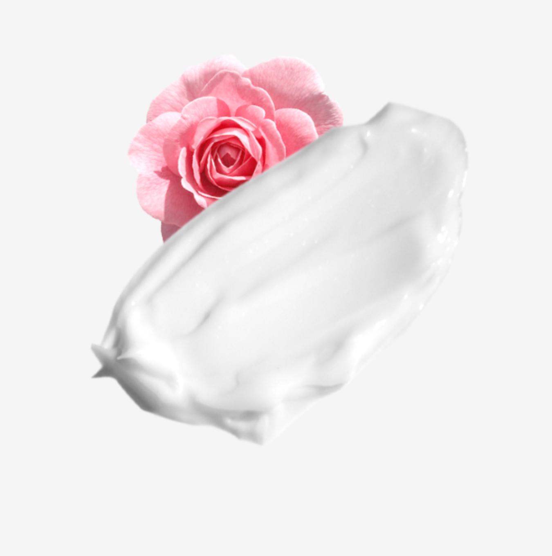 AvryBeauty Rose Water Hand Cream (1.5oz Tube)