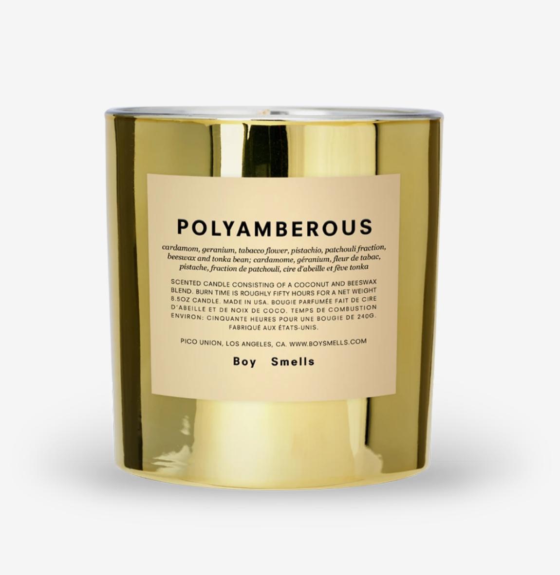Boy Smells Boy Smells - Polyamberous