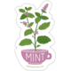 The Neighborgoods Sticker-Mint