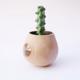 Niko Far West Ceramics NK002 JAM Nip Planter