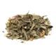 Paper + Tea Sweet Lullaby No. 816