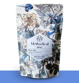 methodical coffee Blue Boy Coffee