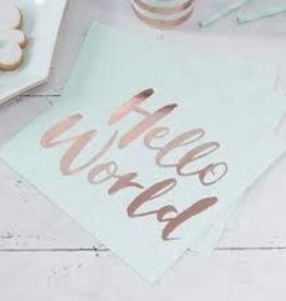 Ginger Ray Hello World Paper Napkins