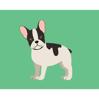 Frenchie French Paint Kit