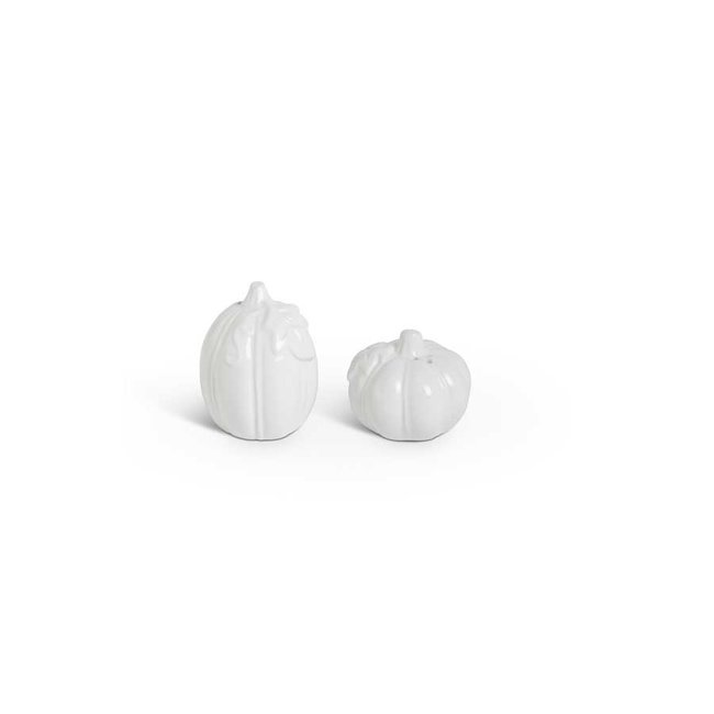 White Pumpkin Salt and Pepper