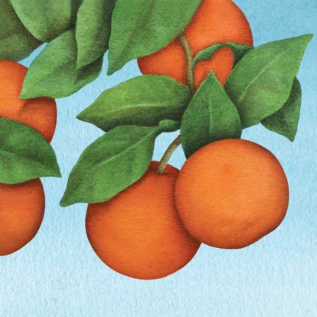 Blue Orange Gift Wrap
