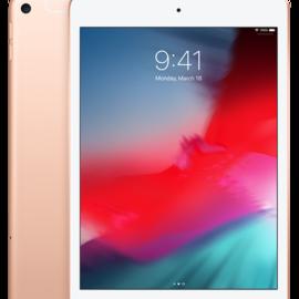 Apple Apple iPad mini 5 Wi-Fi + Cellular 256GB - Gold (early 2019) (ATO)