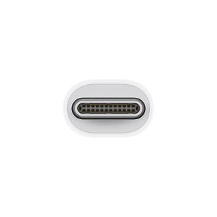 Apple Apple Thunderbolt 3 (USB-C) to Thunderbolt 2 Adapter