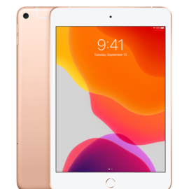 Apple Apple iPad mini 5 Wi-Fi 256GB - Gold (early 2019) (ATO)