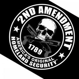 Hot Leather Flag 2nd Amendment