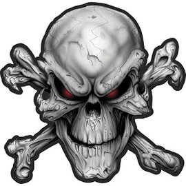 Jerwolf Enterprises Patch Red Eyed Skull 11in
