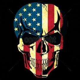 Route 66 Biker Gear Shirt American Skull