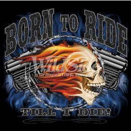 Route 66 Biker Gear *DISC Shirt Born To Ride Skull
