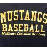 Badger Baseball Dri-fit shirts