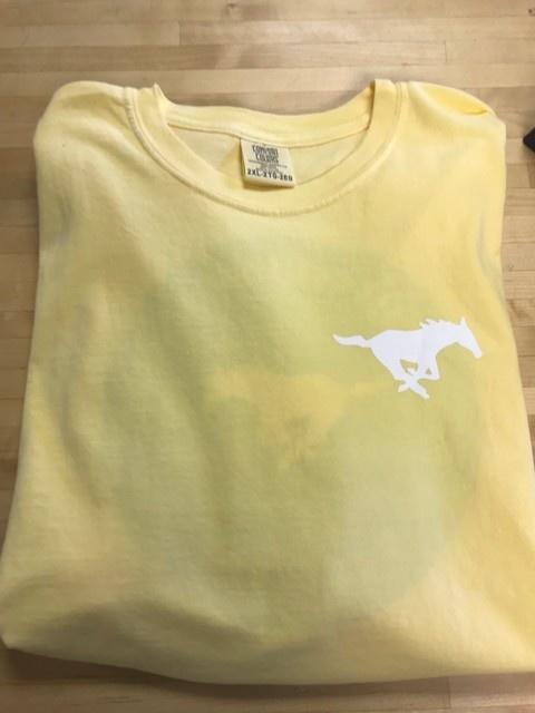 Comfort Colors Plaid Short Sleeve-Butter