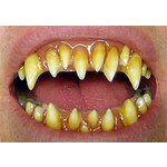 DENTAL DISTORSIONS DENTS DENTAL DISTORSIONS - MORLOCK