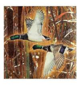 HAVERCAMP SERVIETTES DE TABLE (16) - CHASSE AUX CANARDS