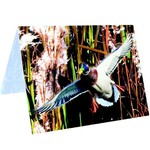 HAVERCAMP INVITATIONS (8) - CHASSE AUX CANARDS
